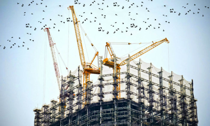 Building being built with cranes and bird flying away from the building