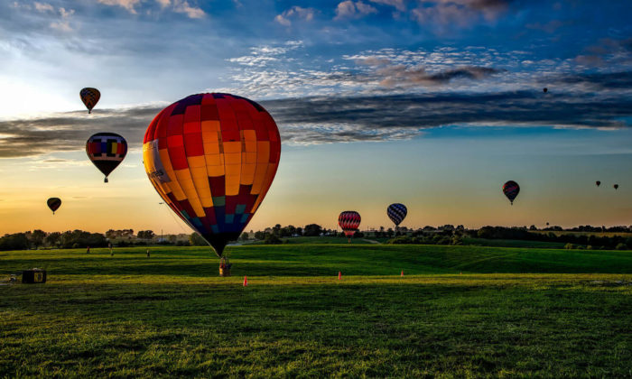 multiple hot air balloons launching into the blue sky above green grass